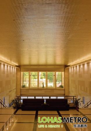 豪华欧式电影院吊顶设计效果图