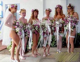 luo体婚礼组图