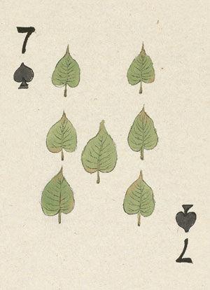 菩提树是佛教的圣树,传说释迦牟尼在菩提树下悟道成佛.