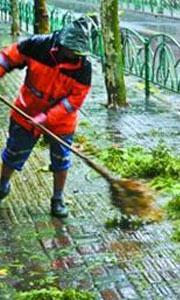 保洁员清扫断枝残叶