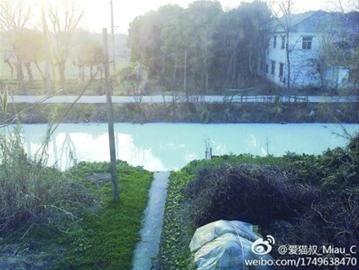 """春节前,松江工业区和车墩镇间的一条铁路河遭遇大面积污染,变成了""""牛奶河""""。"""