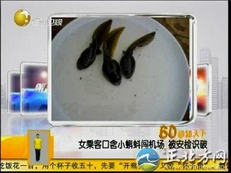 外籍女客口含蝌蚪闯安检 识破被拦图片