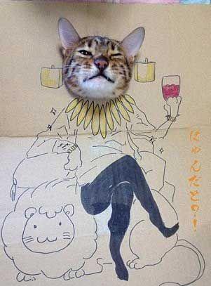 最近据外国媒体报道,一组百变猫咪秀的创意照片爆红,猫咪把头伸进画着