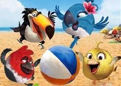 疯狂儿童游戏剧《愤怒的小鸟》
