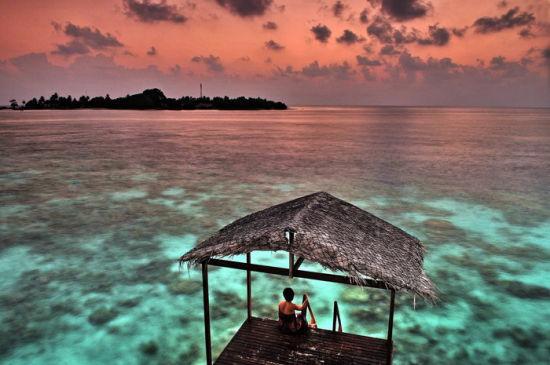 是电影《青春珊瑚岛》和《重回蓝色珊