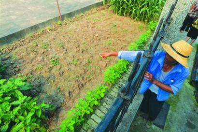 昨日,在事发现场,附近居民纷纷议论巨款被挖走的事情。/晨报记者 肖允