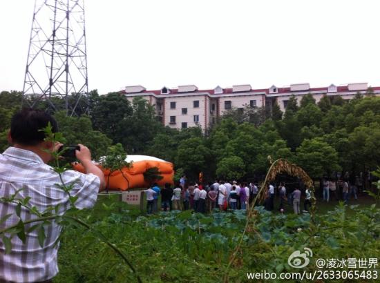 男子因感情受挫爬上普陀高陵路金鼎路处一座高压铁塔 (图:新浪微博网友@凌冰雪世界)