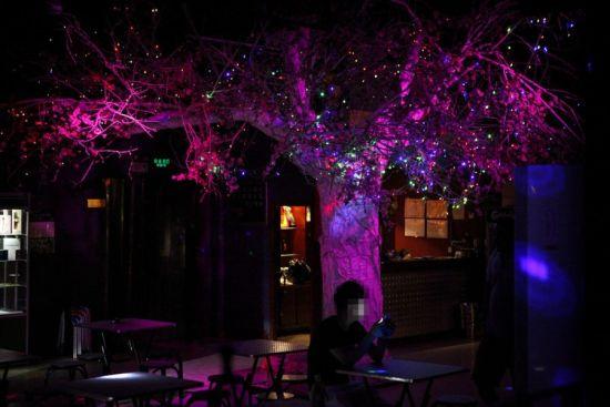 同性恋酒吧:随时间从男人到女人轮回
