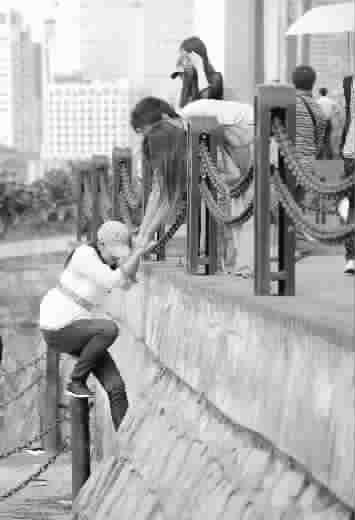 图:国庆长假,在浦东滨江大道,一些游客不顾危险,竟然擅自跨越围栏,进入江畔滩涂湿地 杨建正 摄
