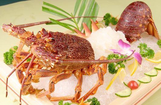 南半球肥美澳洲龙虾盛宴 澳洲龙虾刺身 蓝衣客 蓝龙虾