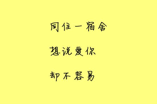 武大三行情书 7
