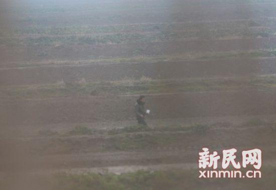 有人在东滩湿地附近投毒。上海市公安边防支队图