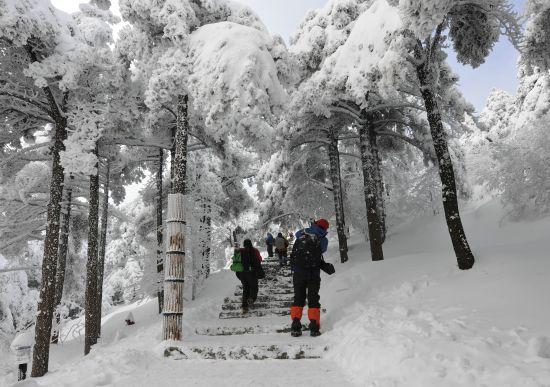 黄山风景区再次迎来最佳赏雪期
