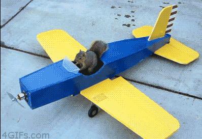 架飞机模型的飞行原理,准备示范一下,说完他跑到自己的卡车里拿遥控器