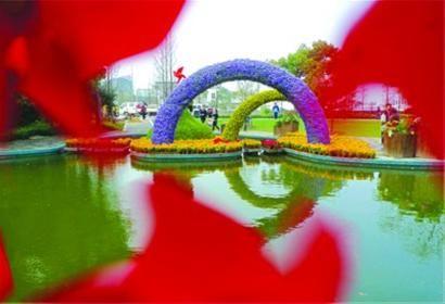 □上海植物园内,花展布置已到尾声。/晨报记者 陈征