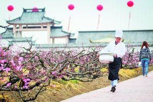 3月27日,滨海世外桃源,新开的小吃店设施仍不完善,靠农庄餐厅的厨师前去送午饭。早报记者 孙湛 图