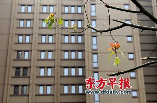 上海市普陀区千阳南路99号,市筹公租房馨越公寓。 早报资料