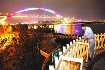 □2010年,亮灯后的卢浦大桥显得熠熠生辉。 /贺佳颖