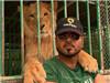 迪拜的珍奇动物