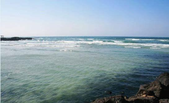 冲绳盛产甘蔗和热带、亚热带水果。冲绳有着闪着蓝宝石光芒的海洋、白沙滩、美丽的珊瑚礁、各种亚热带植物和亚热带风光。冲绳有古老的文化传统和文化遗产。冲绳的古典舞蹈别有风情,据说是琉球王朝为接待中国使者而创制的。冲绳是空手道的故乡,空手道是结合中国武术特点创制的搏击术,最初称为唐手。二次大战后,空手道经美国军人的介绍而传播到全世界。现在有不少世界各国的空手道爱好者来冲绳修习本领。但这都不足以构成它上榜的理由。最主要的是这里有日本亚马逊的称号。   旅行小贴士   1、冲绳大部分宾馆都建在风景优美、视野良好