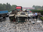 沪昆高速一货车仰翻 1吨大鱼倾倒一地