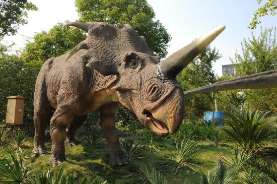 位于公园2号门的自然探索谷--恐龙园,经过1年多的装修扩建,于10月1日重新营业。该园区既保留了天然园林的自然风格,又体现了远古洪荒洞窟时代的神秘色彩。整个园区到处是形态各异的恐龙在活动,种类繁多,数不胜数。游览完恐龙园,再到7D电影院去感受一场动感之旅,享受全新概念的娱乐。空前的刺激体验,畅快淋漓的勇者之旅,真正体会天旋地转的眩晕快感和亲临其境的现场感受。
