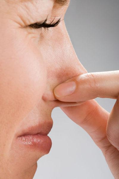 鼻子的画法步骤图表示味道的图片