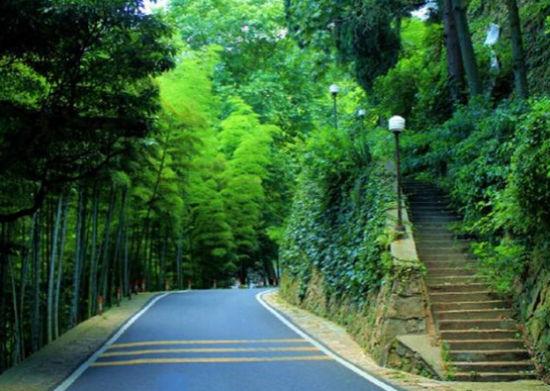 手绘路线图带你走   步道概况:行走于华东的绿肺中