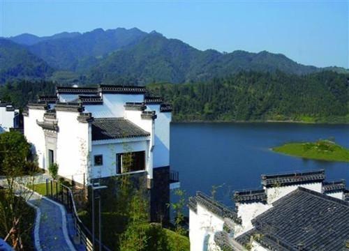 江浙沪小众的亲子度假酒店安吉老树林度假别墅