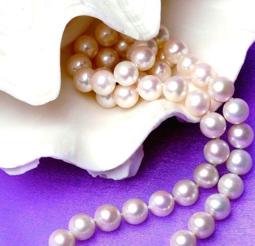 哈萨克斯坦 珍珠