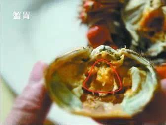 螃蟹四个部位不能食用_美食天下_新浪上海