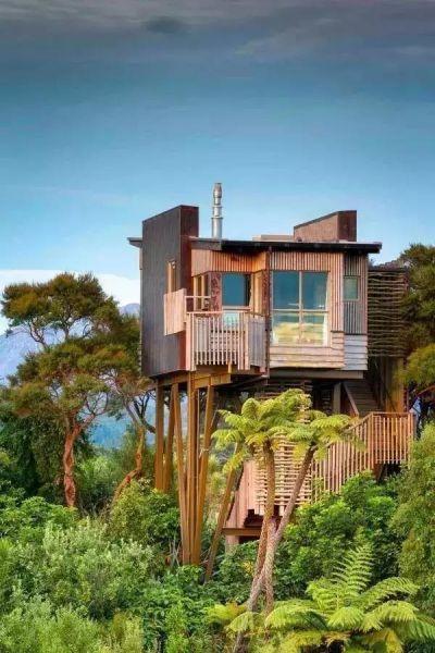 10家长在树上的童年树屋酒店 瑞典树屋酒店