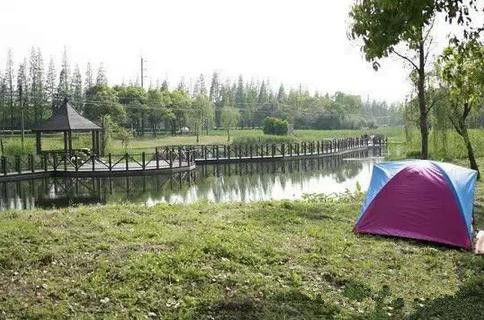 上海12个户外烧烤地推荐:顾村公园等