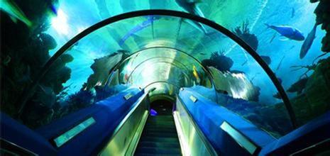 广州动物园里的广州海洋馆非常好玩.