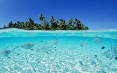 旅行拍摄地全球最适合浮潜的6大海岛