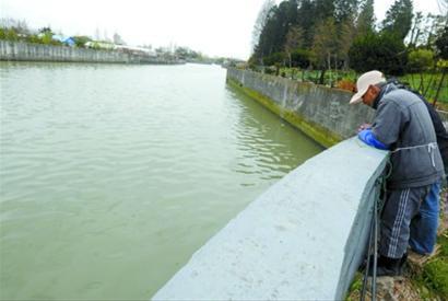 张家塘河水脏臭浑浊 本版图片均为晚报 王浩然 现场图片