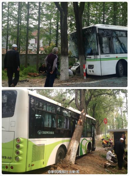 """公交车撞上路边大树。图由网友""""@Estella_Shi""""摄"""