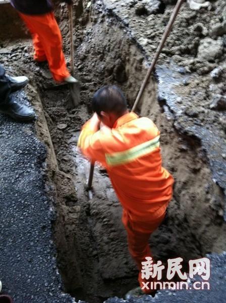 抢修人员深挖以检查地基、管道等安全。新民网记者 李欣 摄