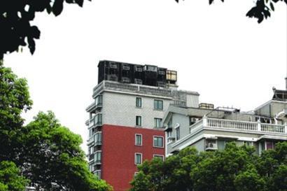 违建鸽棚位于10楼楼顶 蒋迪雯