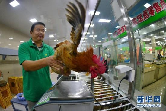 上海市区最大活禽零售交易市场即将正式营业(图)