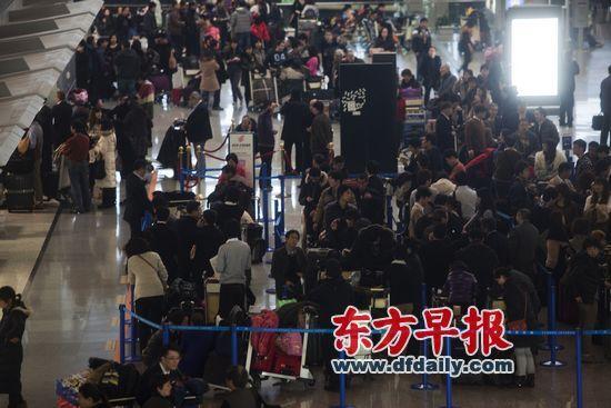 上海浦东机场,大批旅客在排队等候办理登机手续。 杨一 早报资料