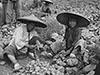 看1945年的上海