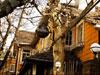 上海必去十条马路