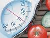 节后减肥7误区