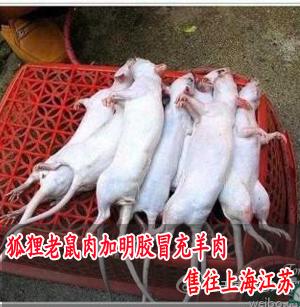 上海市场羊肉价格_上海掺假羊肉_上海地方站_新浪网